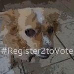 Voter Registration Challenge