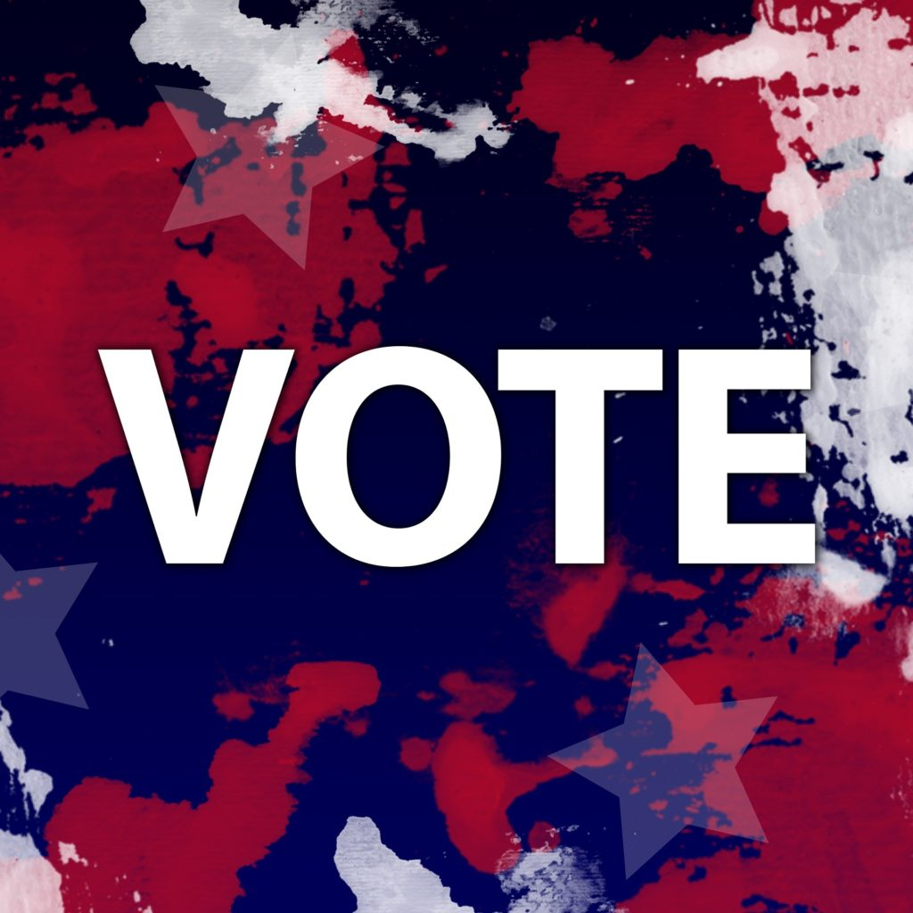 Vote In North Carolina Primary Elections